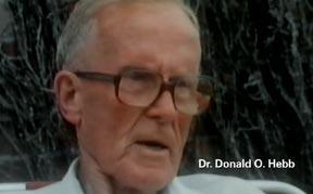 Donald Olding Hebb.