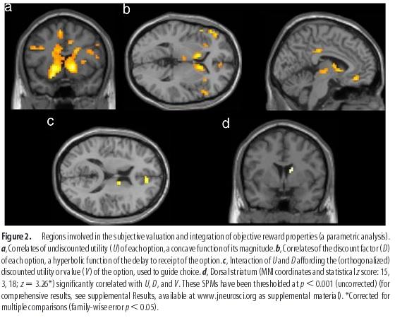 neurology utility